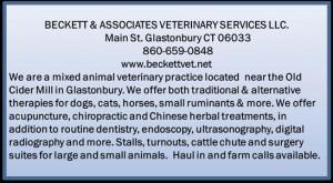 Beckett Vet Services