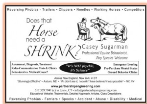 C. Sugarman Horse Shrink