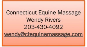 CT Equine Message