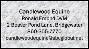 Candle Wood Equine DVM