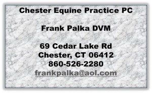 Chester Equine Practice PC