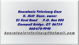 Housatonic Vet Care