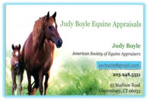 Judy Boyle Equine Appraisals