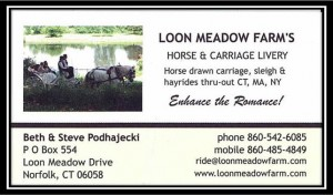 Loon Meadow Horse Carriage Livery