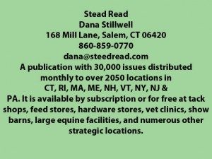 Stead Read