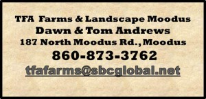 TFA_Farms Landscape Moodus