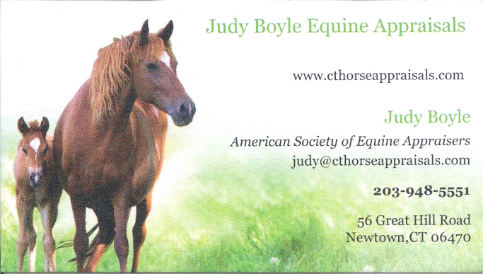 Business members 2 ct horse council inc jeanne lewis images equine photography colourmoves